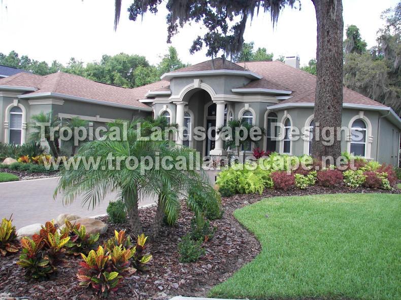 Tropical landscaping designs of tampa bay for Landscape design tampa