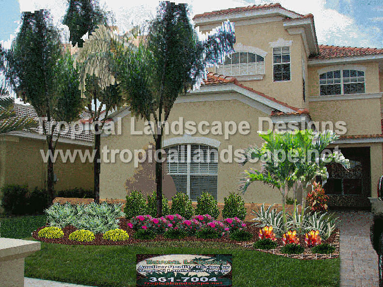 Tropical landscaping designs of tampa bay for Tropical landscape design