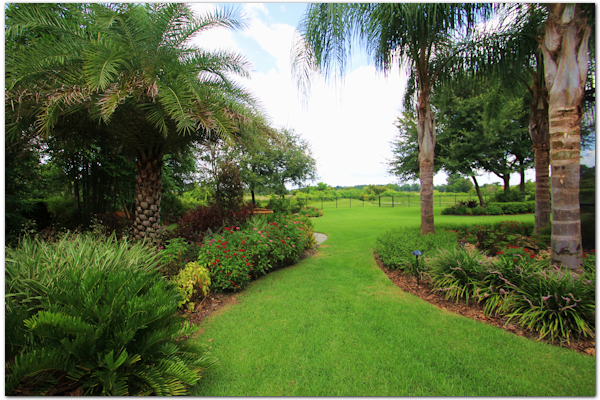 Tropical Landscape Designs Of Tampa Bay
